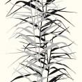 PAPEL PINTADO Hojas de bambú II Negro y Gris