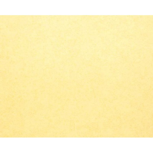 PAPEL PINTADO Esterilla B Amarillo Claro